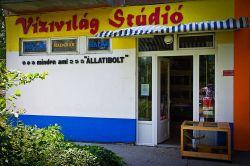 Vízivilág Stúdió Akvarisztika, Díszállat